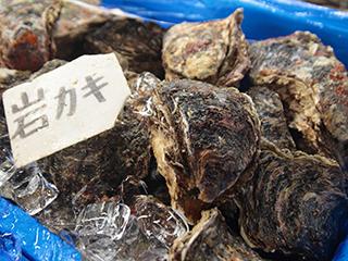 三陸鮮魚・魚介類・活魚の食材
